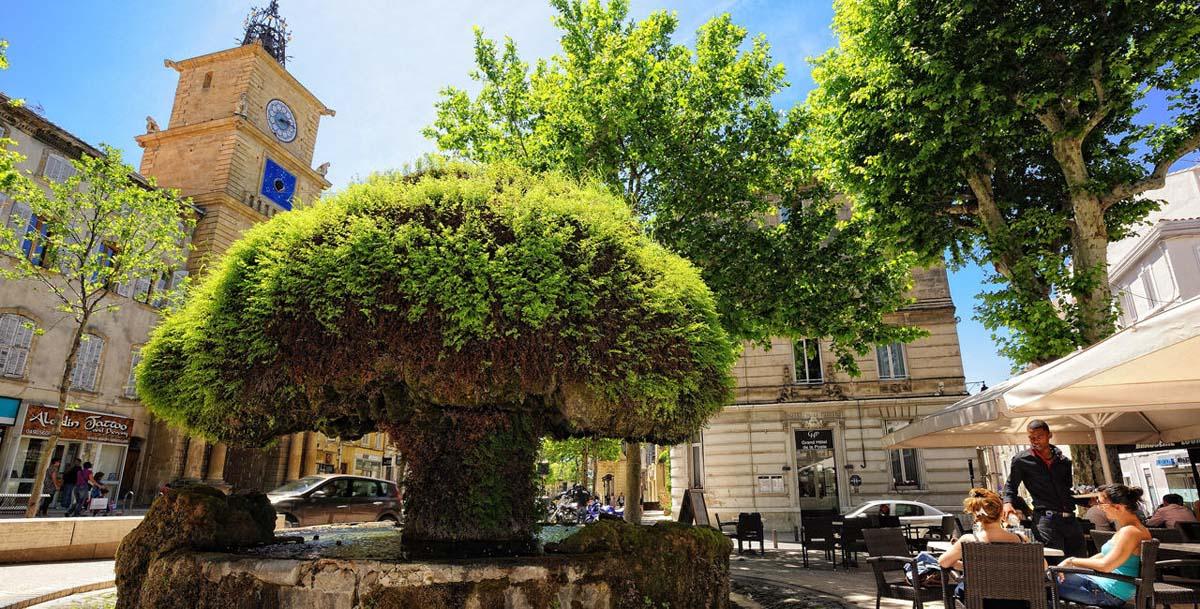 Salon de provence la crau syndicat d 39 initiative for Piscine des canourgues salon de provence